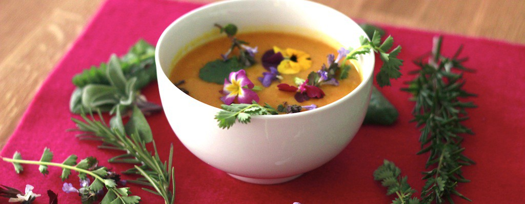 Täglich frische basische Kost, Suppen und Smoothies